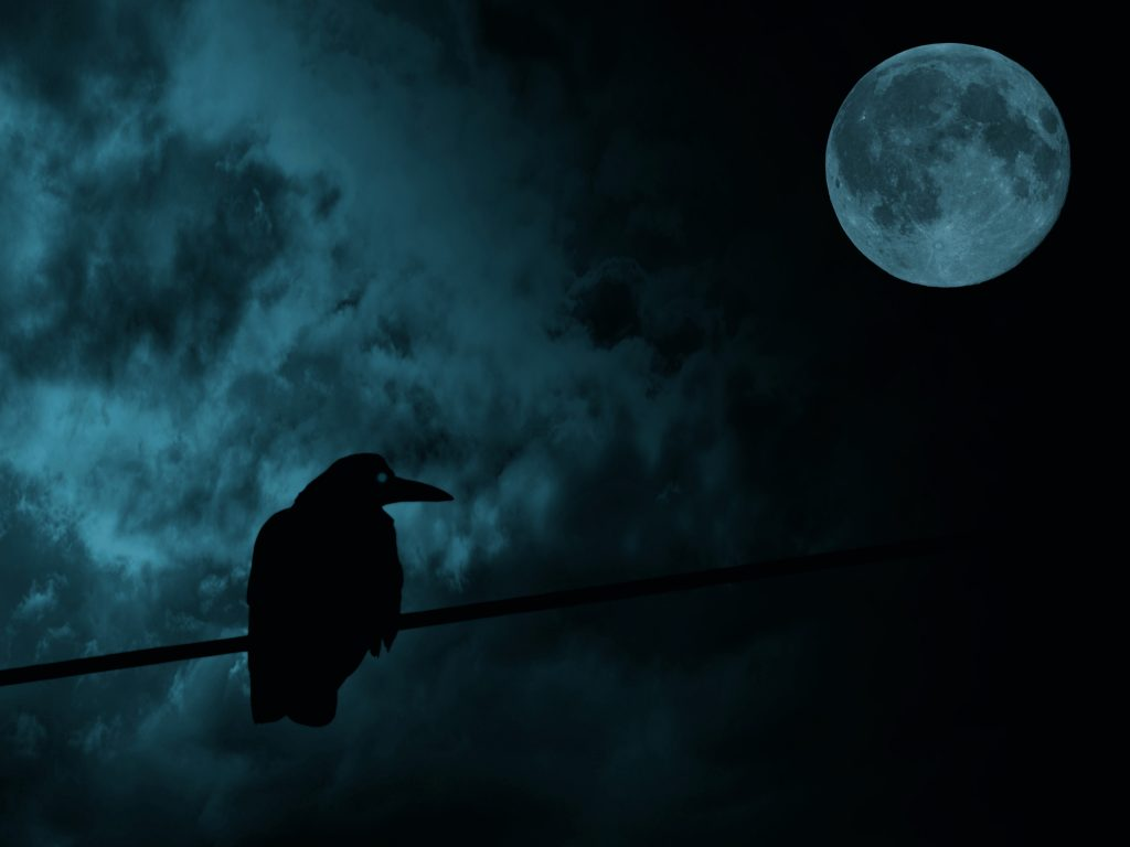 crow silhouette with moon